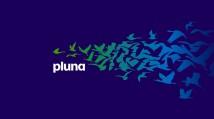 Pluna | commercial plan